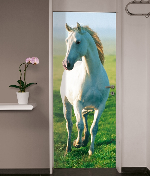 514 White Horse