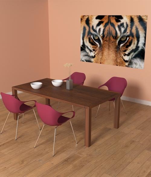 608 Tiger