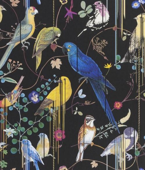 Tapet Birds Sinfonia Sort