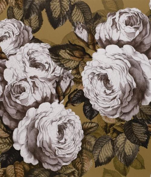 Tapet The Rose Rosa