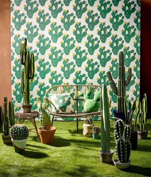 Tapet grøn kaktus - Opunita