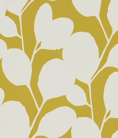 Tapet mælkebøtte gul ocotillo - Ocotillo