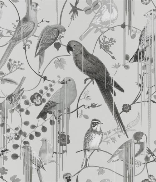 Tapet Birds Sinfonia Grå