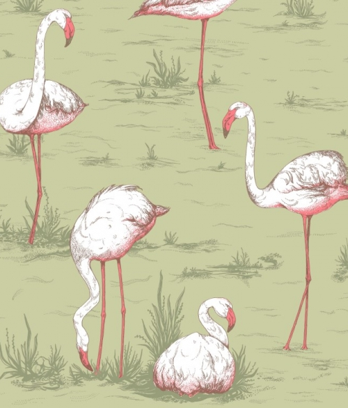 Tapet Flamingos 112/11038