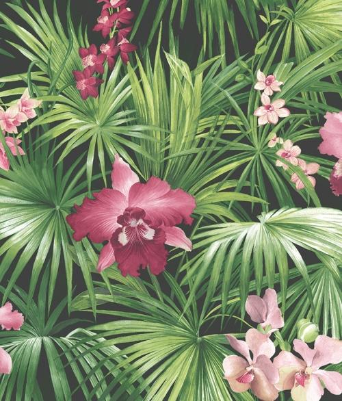 Tapet - Planter med rosa blomst
