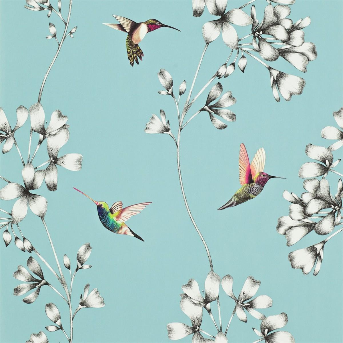 Amazilia tapet med farvestrålende kolibrier og blade på en lyseblå baggrund