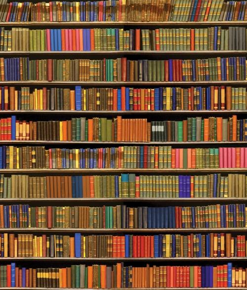 Giant bookshelf-002