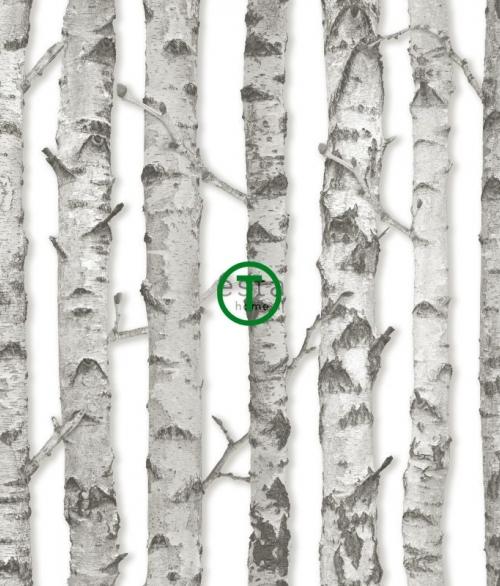 Tapet Birketræer på hvidt
