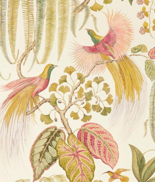 Tapet Bird Of Paradise 216653