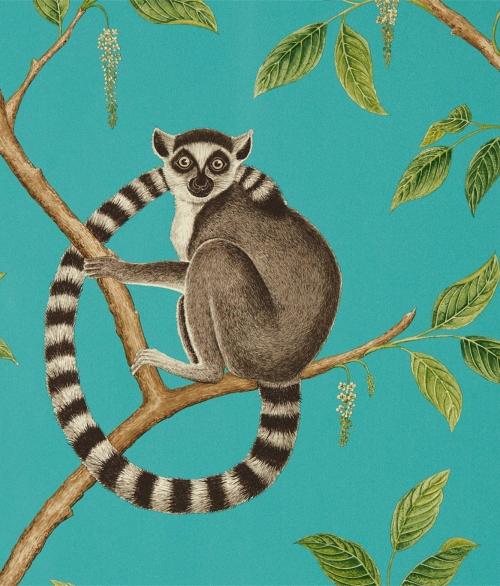 Tapet Ringtailed Lemur 216663