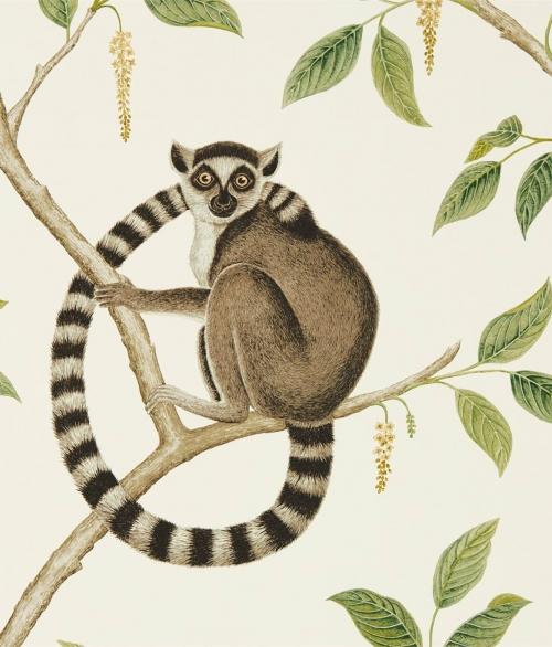 Tapet Ringtailed Lemur 216664