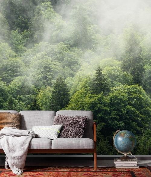 Fototapet Forest Land