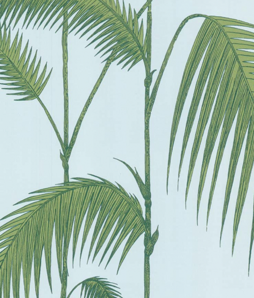 Palm Leaves 66/2010