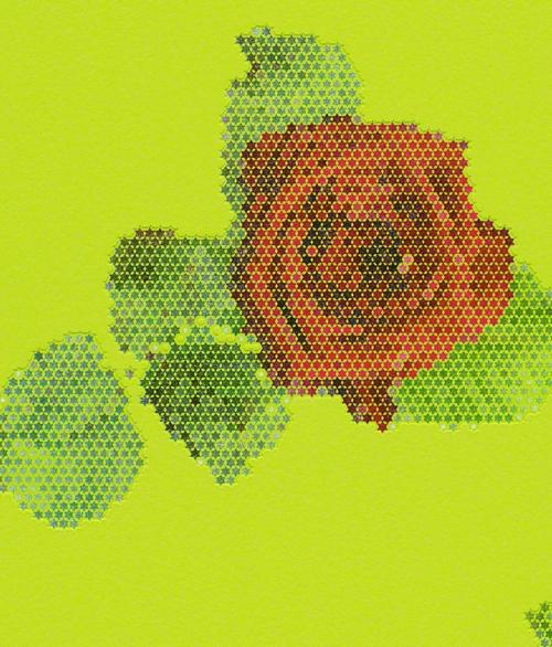 Lars Contzen Martrics Rød rose på grøn baggrund