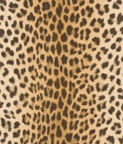 Tapet EW3803 Leopard