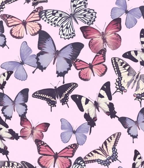 Tapet BA2601 Butterfly